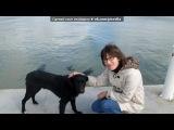 «Одесса» под музыку Сестры Берри (OST